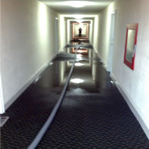 Water Extraction Carpet Pro